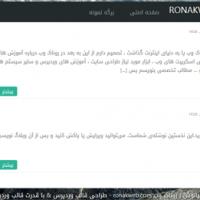 دانلود قالب وردپرس فارسی در سبک فلت Alpha Forte