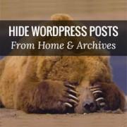 مخفی کردن نوشته ها از صفحه ی اصلی در وردپرس