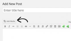افزودن فایل PDF همراه با نمایش آن در وردپرس