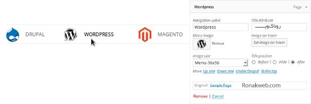 افزودن آیکون به فهرست و ابزارک وردپرس توسط افزونه WordPress Icon