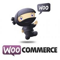 کد دسته بندی و برچسب محصول ووکامرس برای Single Product