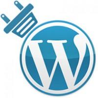 ساخت افزونه وردپرس اختصاصی سایت توسط پلاگین Pluginception
